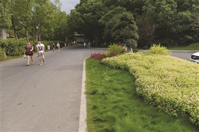 新昌加快推进大佛寺国家5A级旅游景区创建